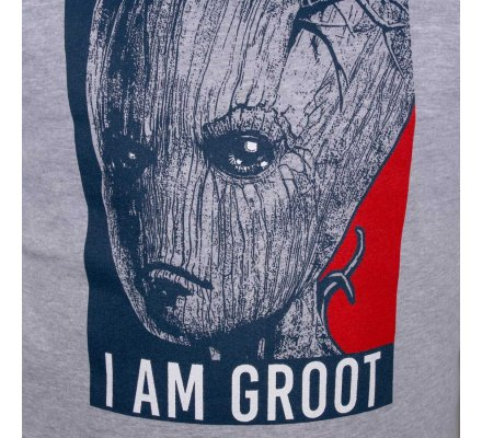 Sweat Groot Gardiens de la Galaxie gris