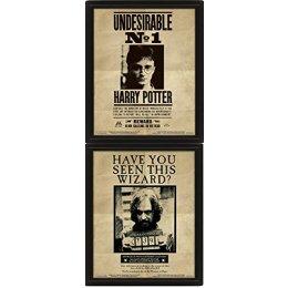 Cadre Harry Potter Sirius 3D