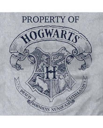 Tee-Shirt Harry Potter Femme Property Of Hogwarts gris